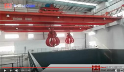 Bridge Crane for Waste Treatment Plant