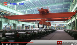 Automatic Bridge Crane for Steel Pipe Allocation