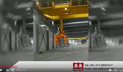 Sandwich Panel Bridge Crane