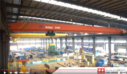 Single Girder Bridge Crane at Production Workshop