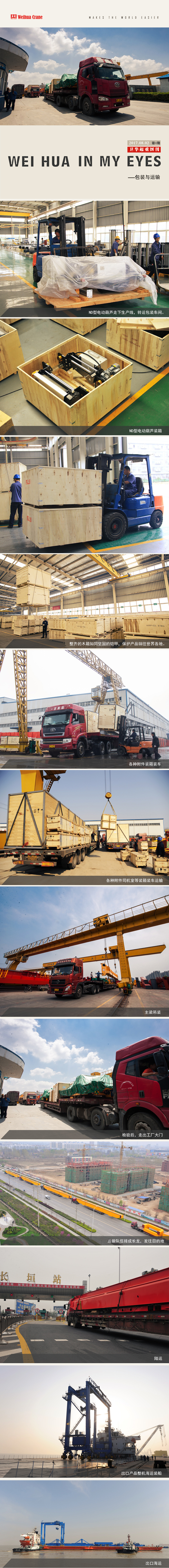 hoist-bridge-crane-Packing